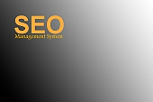 Seo Management System